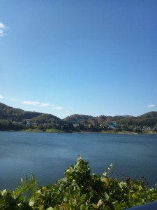 錦秋湖からのぞむ…