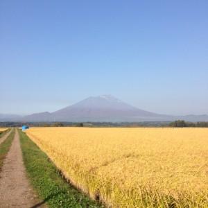 mt.iwate